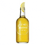 Savanna Light Case